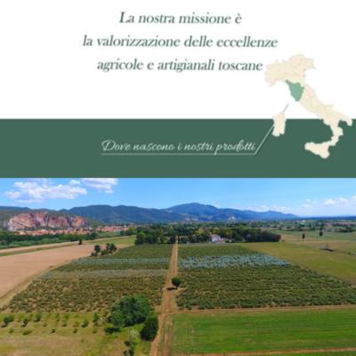Provenienza 100% Made in Tuscany Oligea è la prima filiera italiana dell'eucalipto biologico